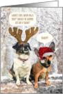 Funny Dog Christmas Card - Snowy Scene and The Santa Paws Mystery card