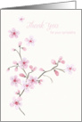 Thank You for Your Sympathy - Pink Blossom Flowers card