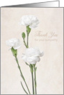 Thank You for Your Sympathy - White Carnations card
