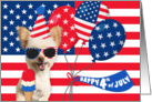 Happy 4th July Independence Day Patriotic Dog card