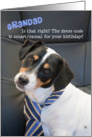 Grandad Birthday Card - Dog Wearing Smart Tie - Humorous card
