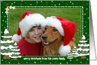 Christmas Photo Card Border - Snowy Decorated Christmas Trees card