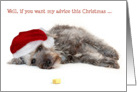 Humorous Christmas Card - Sound Advice from a Pup card
