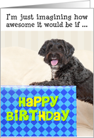 Humorous Birthday Card - Dog and Huge Present card