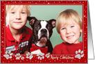 Christmas Photo Card - Sparkle Effect Paws card