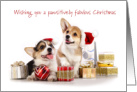Christmas Card - Corgi Puppies and Presents card