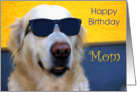 Mom Birthday Card - Golden Retriever in Sunglasses card