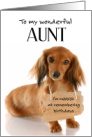 Aunt Belated Birthday Card - Dachshund Dog with Sign card