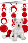 Christmas Card - West Highland Terrier Puppy and Santa Hat card