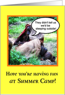 Funny Summer Camp, Orangutans Sleeping Outside Thinking of You card