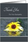 Thank You For Your Sympathy, Yellow Daisy Mirror Reflection In Rain card