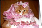Happy Birthday - Pretty Princess Kitten card
