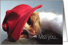 Miss You - Kitty Cat Wearing Red Cap card