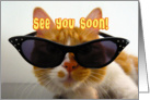 See You Soon - Cool Cat with Sunglasses card