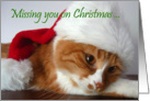Missing You on Christmas - Cat in Santa Hat card