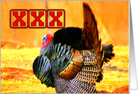 Turkey - Bowling Turkey card