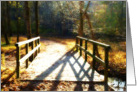 Bridge in Woods card