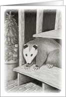 opossum on Deck Step card