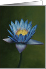 Love for Lotus, a flower painting by Adam Thomas card