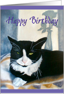 Happy Birthday tuxedo cat on a blanket next to sunny window card