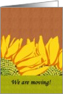 Sunflower moving announcement, sunflowers against wood panel card