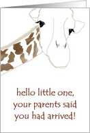 New baby congratulations, A cute giraffe card