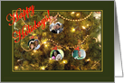 Happy Holidays from family, a Christmas tree photo card