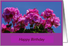 Geraniums-Happy Birthday friend card