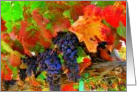 Give Thanks, Thanksgiving, Festive Grapes & Leaves card