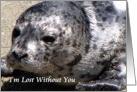 Lost Without You Seal card