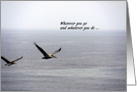 I've Got Your Back, Pelican Flight over the Ocean card