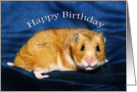 Smiling Caramel Hamster Happy Birthday Card