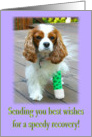 Best Wishes for a speedy recovery Cavalier King Charles Spaniel card