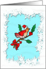 Christmas Robin With White Snowflakes card