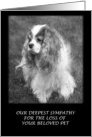 Our Deepest Sympathy For Your Loss Of Pet card