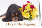 Happy Thanksgiving Cavalier King Charles Spaniel card