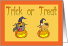 Trick or Treat Cat Dog Halloween Card