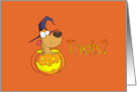 Halloween Treats Cute Dog Card
