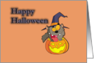Halloween From the Cat in Pumpkin Card
