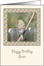 Finch on a Branch Birthday Card for Sister card