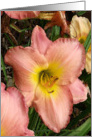 Happy Birthday Mom - Pink Daylilies Birthday Card for Mom card
