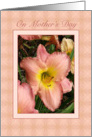 Pink Daylilies Mother's Day Card for Mother card