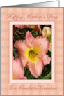 Pink Daylilies Mother's Day Card for Grandma card