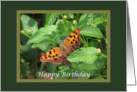 Butterfly on Lantana Birthday Card