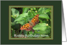 Butterfly on Lantana Birthday Card for Mom card