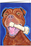 Red Nose American Pit Bull Terrier Dog Bone blank note card