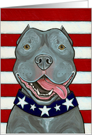 American Blue Nose Pit Bull Dog US Flag Art card