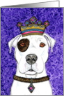 King Crown American Pit Bull Terrier Purple Painting Blank Note Card