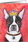 King Crown Boston Terrier Black and WHite Dog Blank Note Card