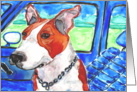 Pit Bull Terrier Dog in Blue Car Blank Card